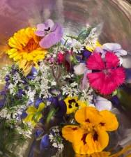 Bowl of freshly picked edible flowers: viola, cilantro, calendula, dianthus, nasturium